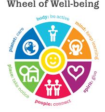 wheel of wellbeing without text